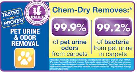 Pet urine is full of ammonia and bacteria, it's a good thing our P.U.R.T. service removes 99.9% of odors and 99.2% of bacteria from your carpets!