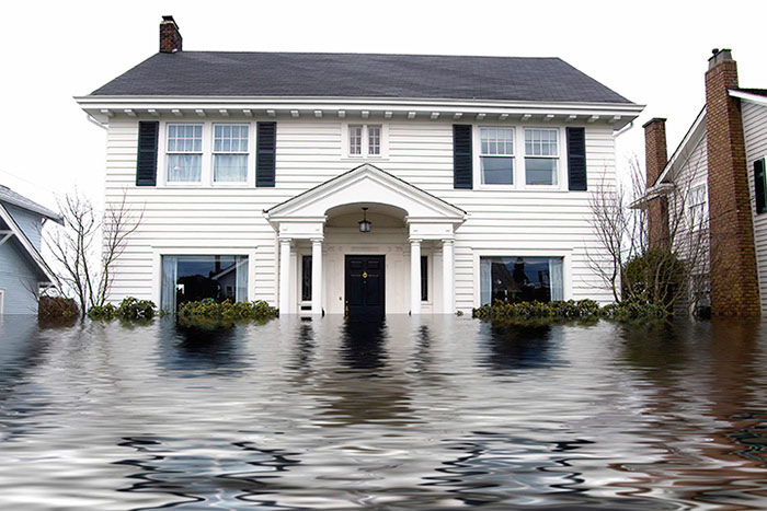 Longleaf Chem-Dry provides Water Damage Restoration Services to Mobile, Semme, Tillman's Corner, Saraland, Satsuma, Chickasaw, Theodore, Eight Mile, Wilmer and Midtown!