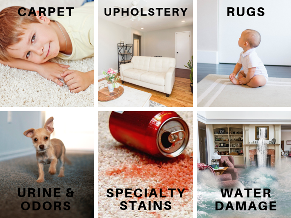 Longleaf Chem-Dry list of cleaning services graphic, carpet cleaning, upholstery cleaning, rug cleaning, urine and odor removal, specialty stain removal, and water damage restoration in Mobile AL